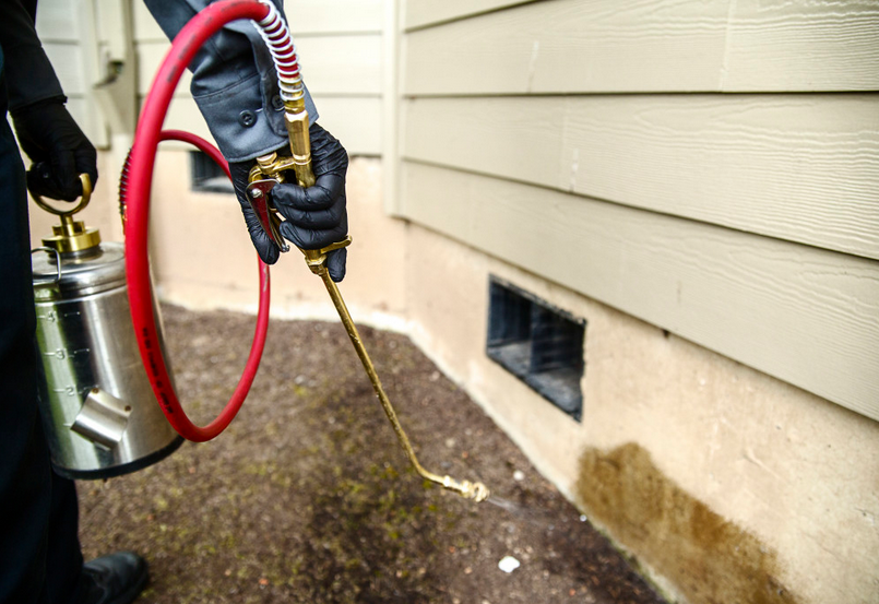 A Few Pest Control Tips To Keep Your Home Pest-Free