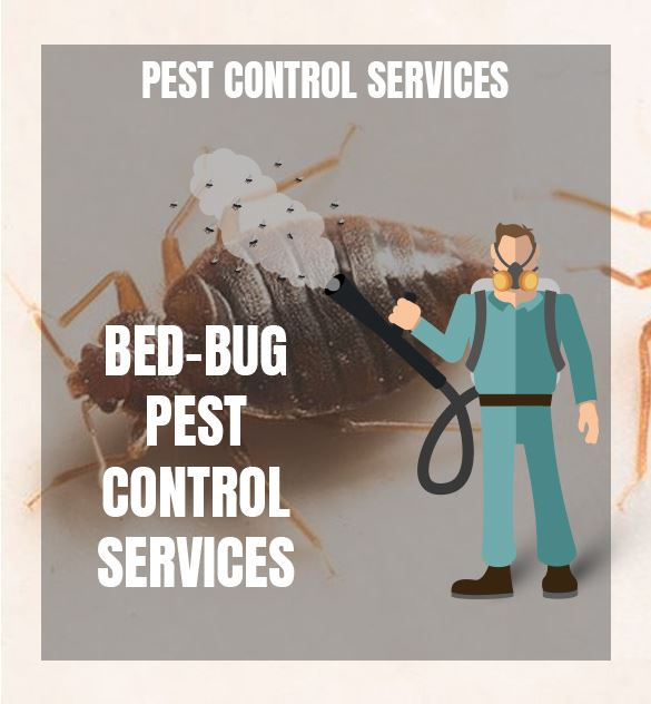 Bed-Bug-Control-Services