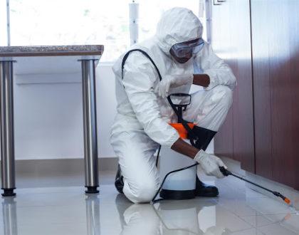 Pest Control Al Nahda Sharjah