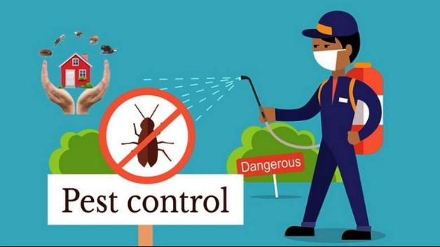 Eradicate pests invasions at once with the pest control companies in Dubai